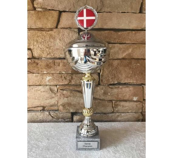 Dansk champion stor