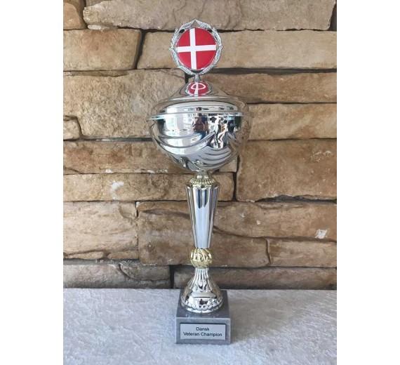 Dansk veteran champion stor