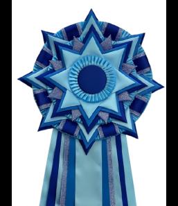 S73 blå